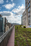 Green Rooftop Garden and New York City Skyscrapers Stock Photos