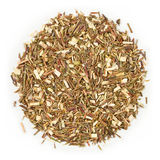 Green Rooibos tea Royalty Free Stock Photography