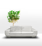 Green room environment concept Royalty Free Stock Image