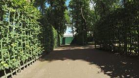 Green rooms Summer Garden stock video footage