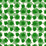Green rose abstract background vector illustration wallpaper. (vector eps 10 Stock Images