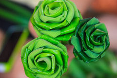 Green rose leaves. Green flower rose leaves three fold by hand Stock Photo