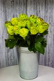 Green roses in a metal vase on a wooden wall background royalty free stock image