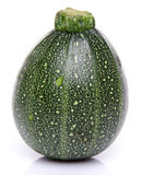 Green round Zucchini Royalty Free Stock Photo