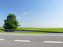 Green route - close up. Close up of road with white lines. The tree and green field in the background under blue sky Stock Photos