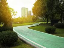 Green routes for cycling in the public park, Bicycle lane. Green routes for cycling in the public park, Bicycle lane stock photography