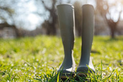 Green rubber boots in country house yard. Real gardeners attire. Classic gardener wellies for gardening and taking care of nature standing in a country house stock photos