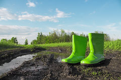 Green rubber boots in the mud next to a puddle on a wet country road. Stock Photography