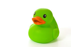 Green Rubber Duck on White
