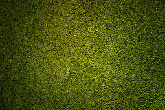 Green rubber texture Stock Photos