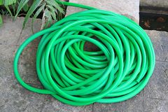 Green rubber tube for watering plants in the garden.  royalty free stock photography
