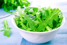 Green rucola fresh salad Stock Image