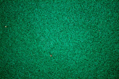 Green rug closed shoot Royalty Free Stock Photo