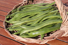 Green runner beans Royalty Free Stock Photos