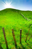 Green rural hill, blue sky and sun beams stock photography