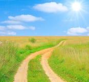 Green rural road Stock Image