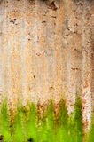 Green Rust Pattern. Green and Brown Rust and Corroded Pattern & Background Royalty Free Stock Photography