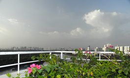 Trees in city. Green Saigon. Green Saigon. Soon there will be tropical rain.Flowers on the balcony Royalty Free Stock Photos