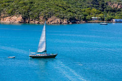 Green Sailboat with White Sail on Blue Water Stock Photography
