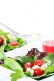Green salad Royalty Free Stock Photos