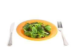Green salad. In orange plate white isolated Stock Images