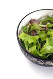 Green salad. Bowl of mixed green salad on white background Royalty Free Stock Image
