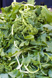 Green salad. At a local market in Rome, Italy Royalty Free Stock Photos