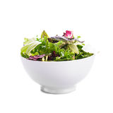 Green salad Stock Photography