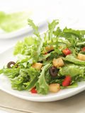 Green salad. Delicious green salad with lots of mixed vegetables, swallow depth of field Royalty Free Stock Photo