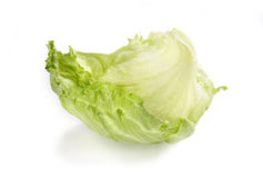 Green salad. On the white background stock images