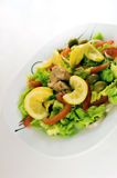 Green salad. Delicious green salad Royalty Free Stock Image