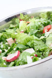 Green salad. Fresh green salad Stock Photography