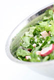 Green salad. Fresh green salad in a bowl royalty free stock photo