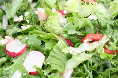 Green salad. Fresh green salad background royalty free stock photo