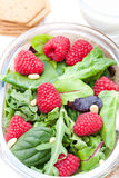Green salad with arugula and berries and pine nuts on white Royalty Free Stock Images