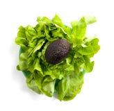 Lettuce and avocado Stock Photo