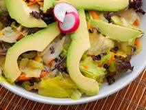 Green salad with avocado Royalty Free Stock Photo