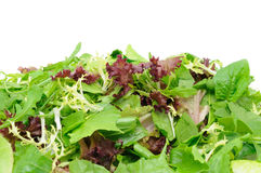 Green salad background Stock Images
