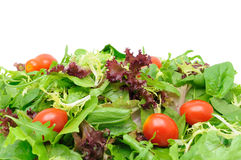 Green salad background Royalty Free Stock Images