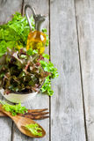 Green salad background. Green salad lettuce with olive oil on old wooden table. Copy space background Stock Photos