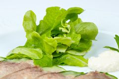 Green salad and beef tongue Stock Image