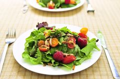 Green salad with berries and tomatoes Stock Images