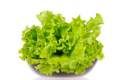 Green salad in the black plate isolated Stock Photos