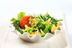 Green salad with cheese Stock Images