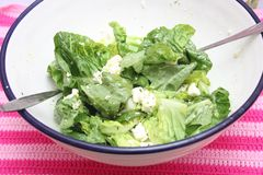 Green salad with cheese Royalty Free Stock Image