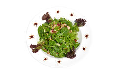 Green Salad with Chicken. Fresh green salad with grilled chicken and pine nuts with a balsamic dressing Stock Image