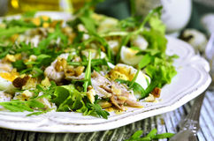 Green salad with chicken,apple and eggs. Stock Photography