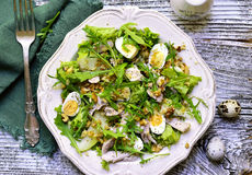 Green salad with chicken,apple and eggs. Royalty Free Stock Photography