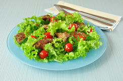 Green salad with chicken liver Royalty Free Stock Photos