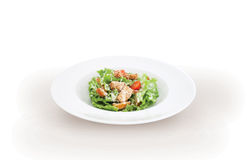 Green Salad with chicken meat Stock Photography